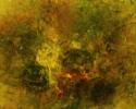 leon-bellefleur-le-perroquet-songeor-1971-huile-sur-toile-20-x-24-po