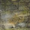 philippe-lacelin-bellefleurentre-les-branches2009-acrylique-sur-toile-61x51cm
